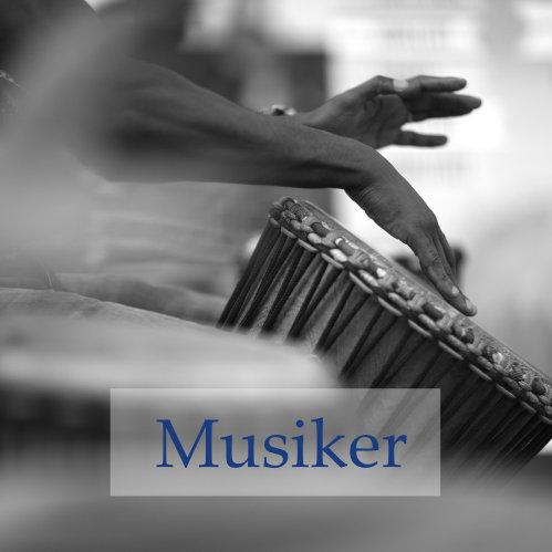 Musiker bei Dhara Music